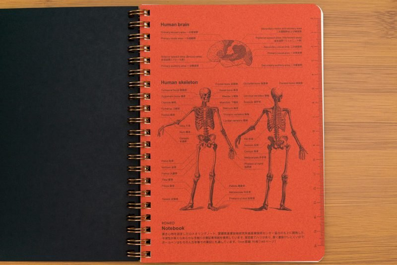 Itoya Romeo Notebook Review Skeleton page