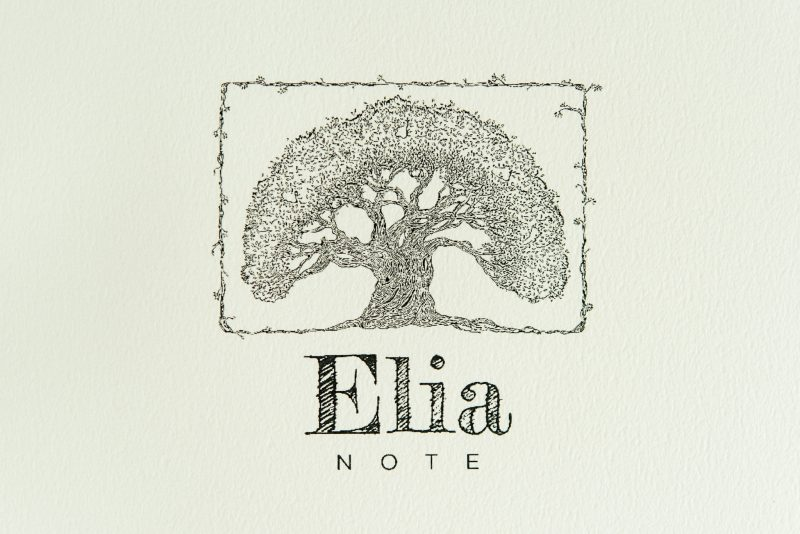 Elia Note notebook review tomoe river paper logo