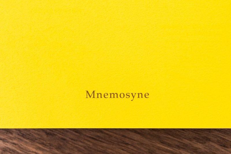 Maruman Mnemosyne Notebook Review
