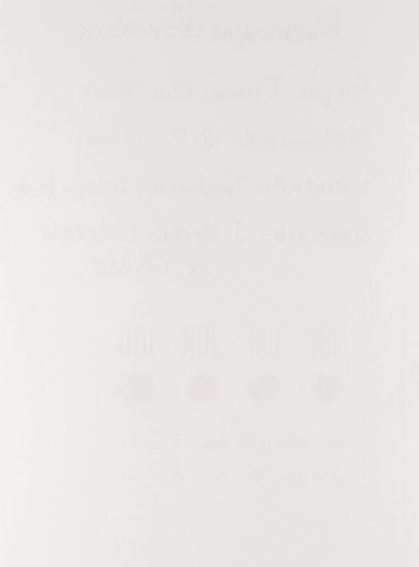Maruman Mnemosyne Notebook Review ghosting