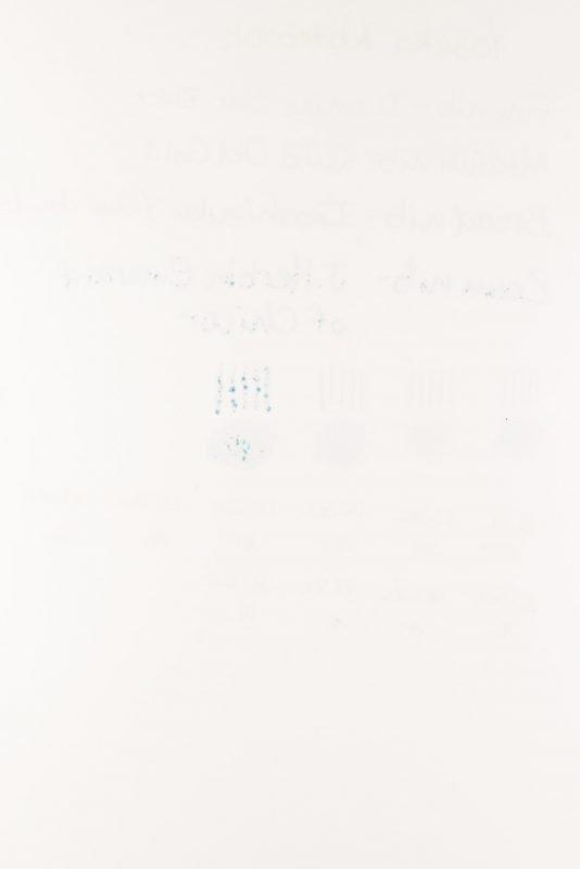 Yoseka Notebook Review bleeding