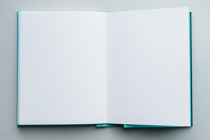 Wild Pages Notebook Review paper